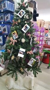 Baum Fressnapf